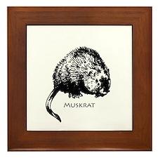 Muskrat Illustration Framed Tile