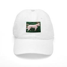 White German Shepherd Dog Baseball Cap