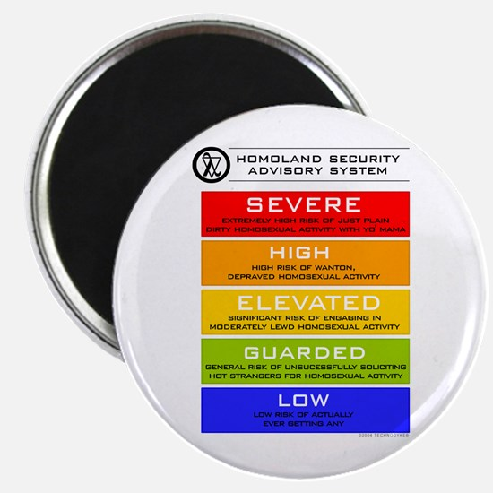 Dept. of Homoland Security Magnet