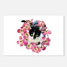 Cat Pink Dogwood Postcards (Package of 8)