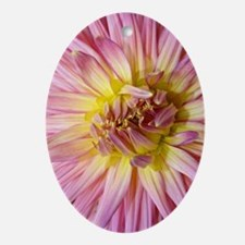 Dahlia Flower Oval Ornament