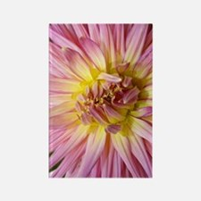 Dahlia Flower Rectangle Magnet