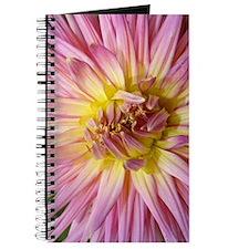 Dahlia Flower Journal