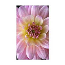 Dahlia Flower Decal