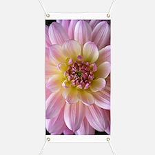 Dahlia Flower Banner