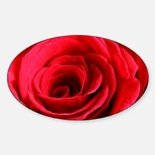 Red Rose Decal