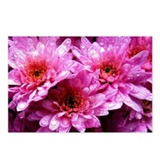 Flowers Postcards (Package of 8)