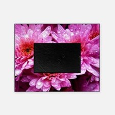 Flowers Picture Frame