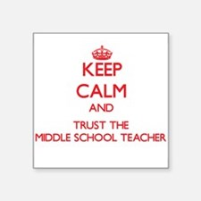 Keep Calm and Trust the Middle School Teacher Stic