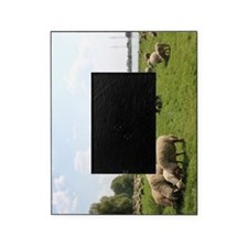 Grazing Sheep Picture Frame