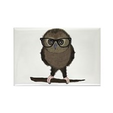 Hipster Owl with Glasses Magnets