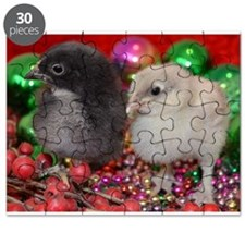 Baby Chicks Puzzle