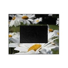 daisy Picture Frame