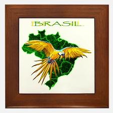 Brasil - Arara Framed Tile