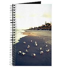 Beach Gulls 1 Journal