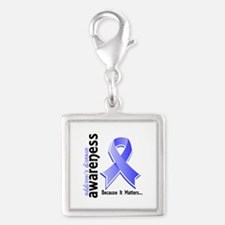 Awareness 5 Addisons Silver Square Charm