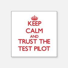 Keep Calm and Trust the Test Pilot Sticker