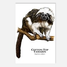 Cotton-Top Tamarin Postcards (Package of 8)