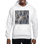 Puma Cougar Track Hoodie