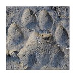 Puma Cougar Track Tile Coaster