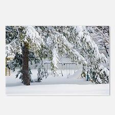 Snowy trees in winter landscape Postcards (Package