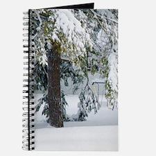 Snowy trees in winter landscape Journal