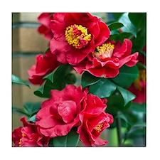 Camellia Tile Coaster