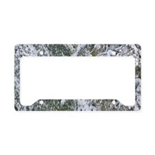 Branches in winter season License Plate Holder