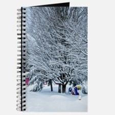 Tree branches covered by snow Journal