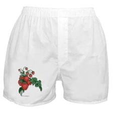 Strawberries! Boxer Shorts