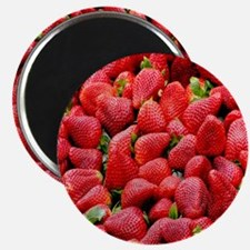 Strawberry Print Magnet
