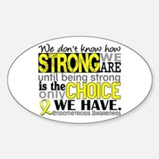 How Strong We Are Endometriosis Decal