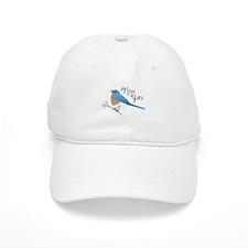 neW yoRK Bluebird Baseball Baseball Cap