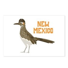 NEW MEXICO Roadrunner Postcards (Package of 8)