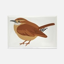 Great Wren Magnets