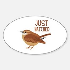 JUST HATCHED Decal