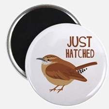JUST HATCHED Magnets