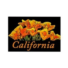 California Poppies with Text California Magnets