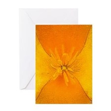 California Poppy Abstract Greeting Cards