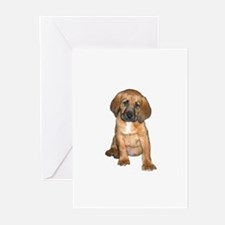 Bloodhound Pup Greeting Cards (Pk of 20)