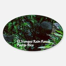 El Yunque Rainforest Decal