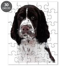 Tosca, Springer Spaniel Puzzle