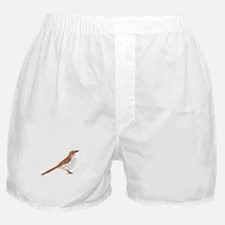 Brown Thrasher Boxer Shorts