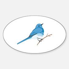 Mountain Bluebird Decal