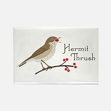 Hermit Thrush Magnets