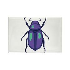 Purple Beetle Magnets