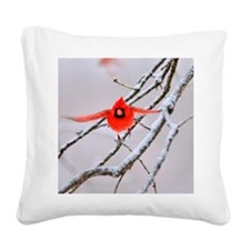 The Cardinal Square Canvas Pillow