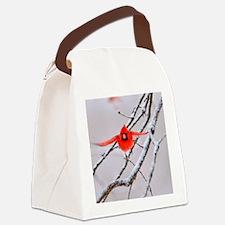 The Cardinal Canvas Lunch Bag
