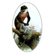 Long-tailed monkey antique picture Decal