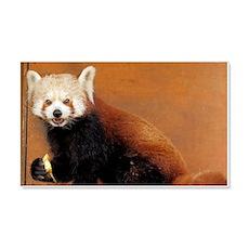 Cute little coon Wall Sticker